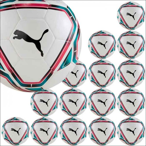 Puma teamFINAL 21 Lite Ball 290 Gr.5 15er Ballpaket